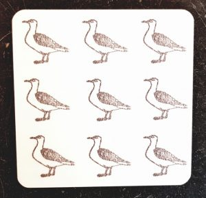 coaster, designer coaster, seagulls, seagull, seaguill prints, seagull designs, seagull coaster seagull gifts, seaside, patterned gifts, jane adams, the jane adams gallery, cornwall, st just