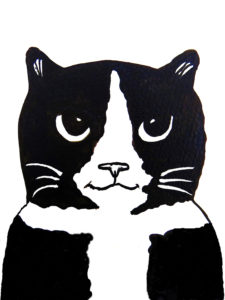 card, cards, greetings cards, birthday cards, cat cards, black and white cats, pawprint designs