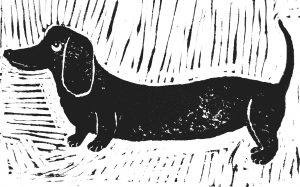 card, cards,greetings cards,birthday cards, daschund themed, dog themed, linocut, jane adams ceramics, pawprint designs