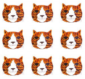greetings card, card, birthday card, cat card, ginger cats, jane adas