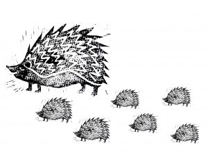greetings card, cards, birthday cards, greetings card, blank card, handmade cards, linocut cards hedgehogs, jane adams