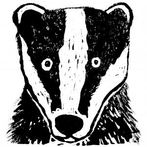 badger, card, cards, greetings card, birthday card, wildlife, linocut, jane adamws