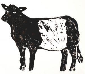 belted galloway cow, beltie, greetings card, card, cards, birthday card, jane adams, lino print