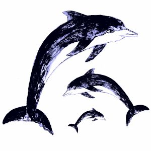 blue dolphin, dolphin, greetings card, birthday card, card, cards, lino print, jane adams