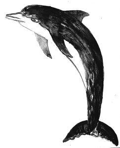 dolphin, greetings card, birthday card, jane adams, linoprint