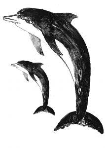 dolphin, dolphins, card, cards, greetings card, birthday card, lino print, jane adams