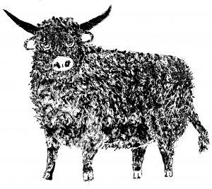 highland cow, cow, greetings card, card, birthday card, lino cut, lino print, jane adams
